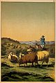 A shepherd and his sheepdog guarding his flock which entails Wellcome V0021363.jpg