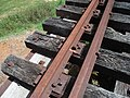 Abandoned Railway Bridge Mooball - panoramio (1).jpg