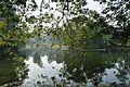 Acharya Jagadish Chandra Bose Indian Botanic Garden - Howrah 2011-01-08 9859.JPG