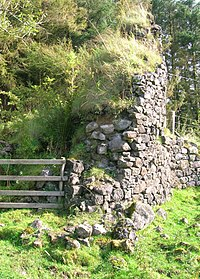 Achinbathie Tower - detail of tower wall
