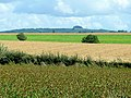 Across the fields to May Hill - geograph.org.uk - 1456106.jpg