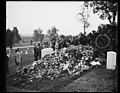 Admiral Sims grave, Arlington National Cemetery, VA, Oct. 1.Another American hero goes to his final resting place, the grave of Admiral William S. Sims, U.N.N. retired, banked high with LCCN2016878605.jpg