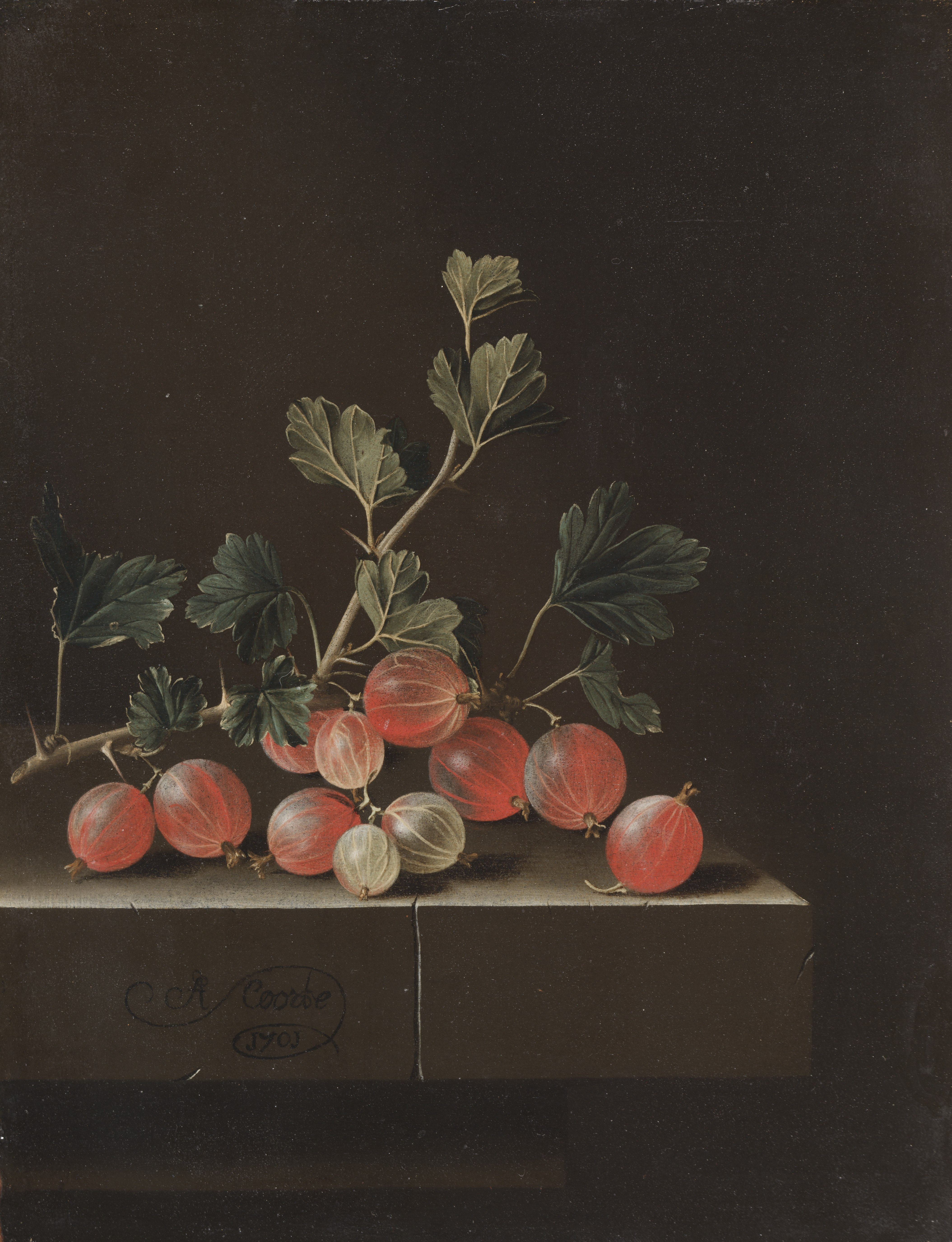 Gooseberries on a Table (1987.32)