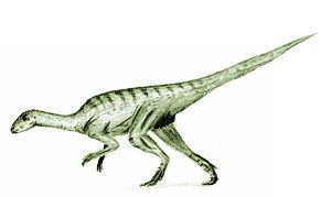 Callovian - Agilisaurus