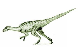 Bathonian - Agilisaurus