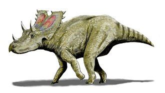 Aguja Formation - Agujaceratops
