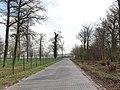 Ahlen, Germany - panoramio (36).jpg