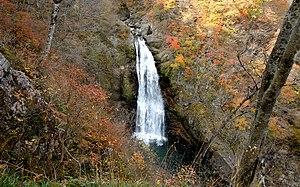 Akiu Falls 2008.jpg