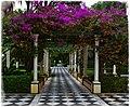 Alameda Gardens (38441430071).jpg