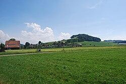 Alberswil 119.jpg