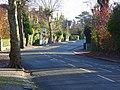 Albert Road, Caversham Heights - geograph.org.uk - 616930.jpg