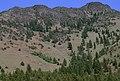 Aldrich Mountains, Malheur National Forest (36169531122).jpg