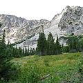 Alpine Meadow (15162183076).jpg