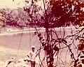 Altun Ha Belize July 1975 - Rockstone Pond.jpg