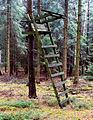 Alvern - Hochsitz eines Jägers.jpg