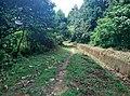 Ambalapara - Ii, Kerala, India - panoramio (2).jpg