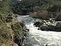 American River, Auburn, CA - panoramio - UncleVinny (3).jpg
