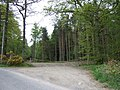 An entrance to Ley Wood - geograph.org.uk - 423493.jpg