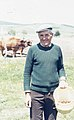 Andalucian farmer broadcasting maize after ox plough. (37756751201).jpg