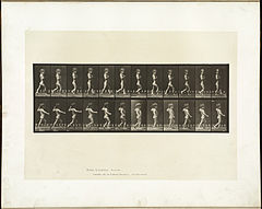 Animal locomotion. Plate 540 (Boston Public Library).jpg