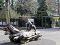 Apenheul Primate Park (6488535799).jpg