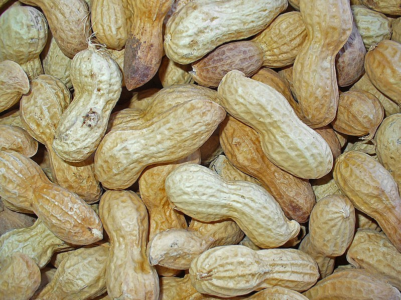 Peanut shells, with one split open revealing two seeds with their brown seed coats.