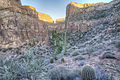 Aravaipa Canyon Wilderness (15224815349).jpg