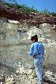 Arawak soil profile.jpg