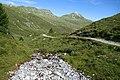 Arosa - stream and trail.jpg