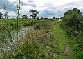 Ashby Canal and towpath - geograph.org.uk - 931498.jpg