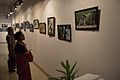Atanu Ghosh - Solo Exhibition - Kolkata 2014-09-16 7961.JPG