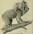 Australia and New Zealand (1893) (19728860753).jpg