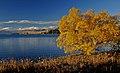 Autumn at Lake Tekapo NZ (10) (8670138691).jpg