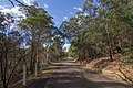 Avon NSW 2574, Australia - panoramio (30).jpg