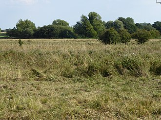 Badley Moor - Image: Badley Moor 6