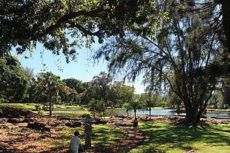Liliuokalani Park and Gardens - Banyan Tree and Bamboo at the Gardens