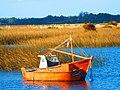 Barcas de pesca en Bañados de Santa Lucia, (Montevideo, Uruguay).JPG