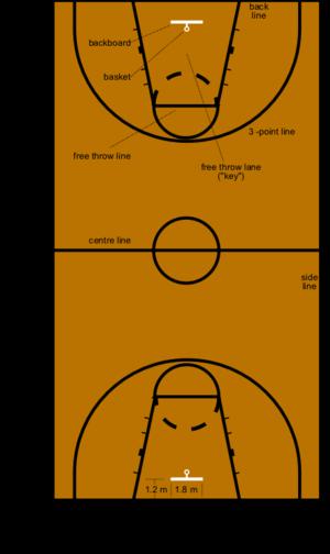 a1381fc38445f Plan d un terrain de basket-ball réglementaire ...