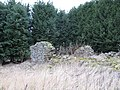 Bastle, Printonan - geograph.org.uk - 355007.jpg