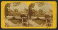 Beauties of the soldiers' home, Dayton, O, by Gates, G. F. (George F.) 8.png