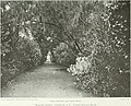 Beautiful gardens in America (1915) (14780854351).jpg