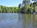Beaver Pond - panoramio (3).jpg