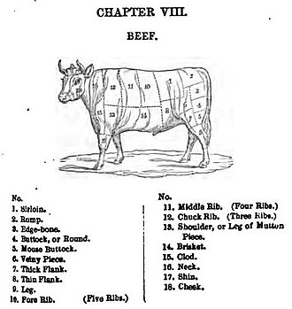 Eliza Acton - Information on ingredients, including cuts of beef
