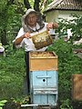 Beekeeper (26742074186).jpg