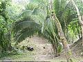 Belize, Cahal Pech Laslovarga054.JPG