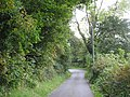 Bend in the road by Siop y Lon - geograph.org.uk - 1003901.jpg