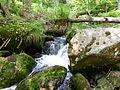 Berg-Bach im Sagwassertal.jpg
