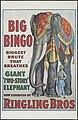 "Big Bingo - Giant ""two-story"" elephant now exhibited by Ringling Bros.jpg"