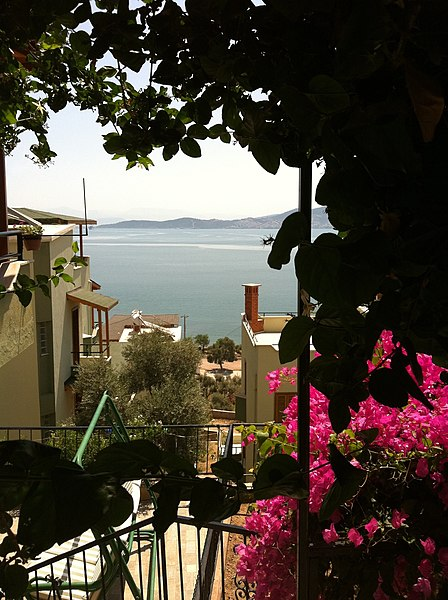 File:Bingul's House - panoramio.jpg