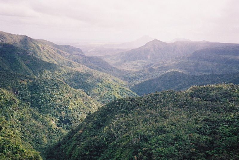 where to go in the island of Mauritius - see tha black river gorges.